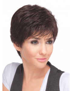Take wig - Ellen Wille Hairpower Collection - Front View in Espresso Mix